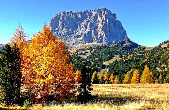 Nachhaltigkeit im Tourismus in Südtirol